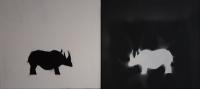 2017_Rhinos_Acrylspray_je50x45cm